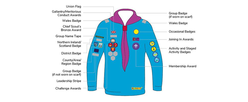 Beaver scout badges